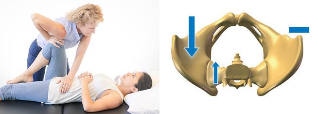 Provocative Test - Thigh Thrust (pic + pelvis)